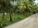 Остров Ла Диг. Сейшелы